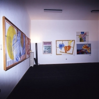 1989-Senesi-larte-della-visione-01