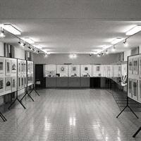 1979_diplomi_stemmi_nobiliari_diploma_araldico_Gentili_06